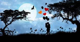 Chi ha paura d'amare