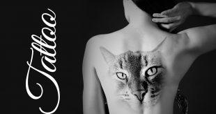 tatuaggi significato gatto